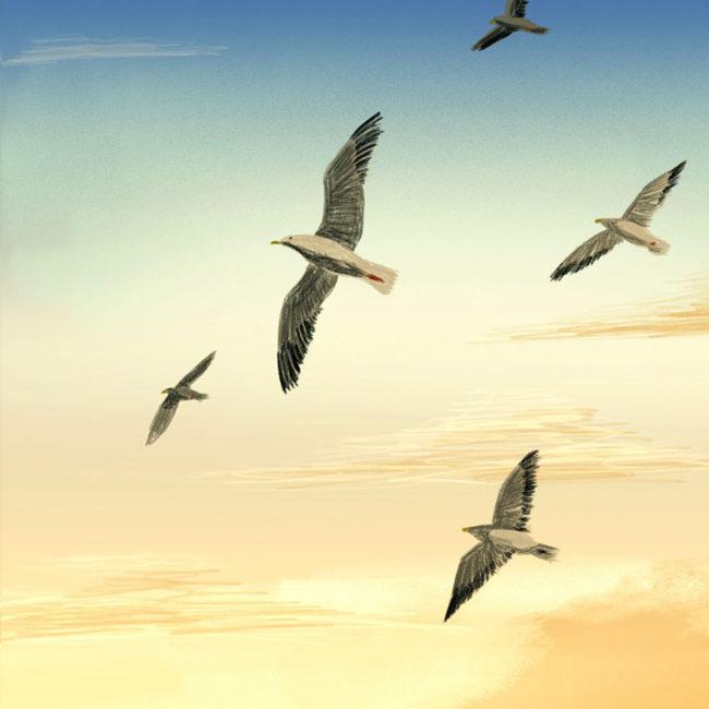 イラストレーション 風景 空 鳥 夕景