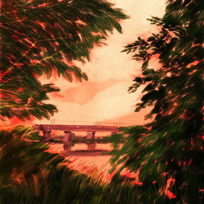 イラストレーション 風景 夕景 木
